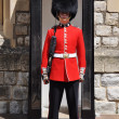 Guard at the Tower of London — Stock Photo #11601675