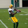 Receiver Donald Driver of the Green Bay Packers - Stock Photo