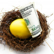 Nest egg gold — Stock Photo
