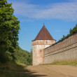 Old wall with towers in fort — Stock Photo