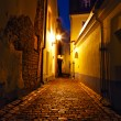 Stock Photo: Old Europestreet at night