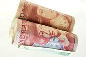 Bankroll... Swedish — Stock Photo