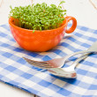 Sprouts of cress in an orange cup, fork and spoon on checkered napkin — Foto de Stock