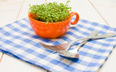 Sprouts of cress in an orange cup, fork and spoon on checkered napkin — Stock Photo