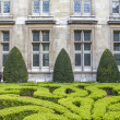 Boxwood in a park in Paris, France - Stock Photo