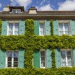 Old house covered by ivy in Paris, France - Stock Photo