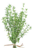 Fresh thyme herb on white — Stock Photo