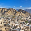 Town of Leh, capital of Ladakh, India — Stock Photo #12379585