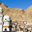 Leh, the capital of Ladakh, India, with mosque — Stock Photo #12379590