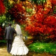 Autumn. The bride and groom — Stock Photo