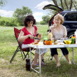 Two women on the nature of the table - Stock Photo