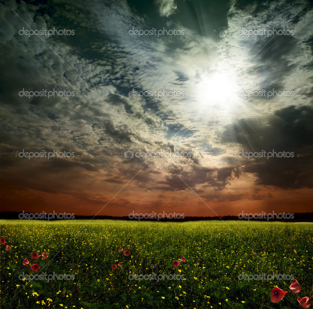 A woman in a field in the sky — Foto Stock #11039372