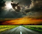 Road// — Stock Photo