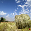Haystack on the meadow - Stock Photo