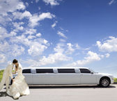 Bröllopet kiss — Stockfoto