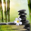 Spa stones,bamboo with frangipani — Stock Photo #11982487