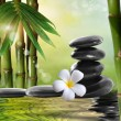 Spa stones,bamboo with frangipani — Stock Photo