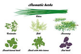 Aromatic herbs poster — Stock Vector