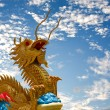 Stock Photo: Dragon on sky in background.