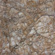 Stock Photo: Macro nature stone pattern