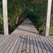 Stock Photo: Wood bridge