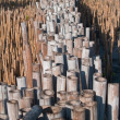 Stock Photo: Field of bamboo tube