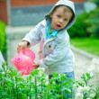 The child waters flowers — Stock Photo