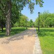 Path in the park — Stock Photo #10748670