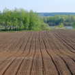 Spring tillage. Rural Landscape — Stock Photo
