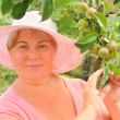 A woman in a pink hat at their summer cottage with a branch of apple — Stock Photo