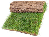 Roll of Grass Rug — Stock Photo