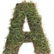 Grassy Letter A Cut Out — Stock Photo