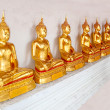 The Buddha status — Foto Stock