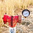 Stock Photo: Water pressure gage on field