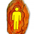 Stock Photo: Guide post wood of restroom for male