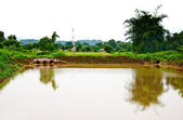 The Reservoir water for agriculture — Stock Photo
