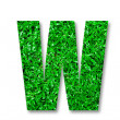 Stock Photo: The Green grass alphabet of w isolated on white background