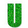 The Green grass alphabet of u isolated on white background — Stock Photo