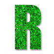 The Green grass alphabet of r isolated on white background — Stock Photo