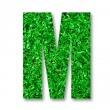 Stock Photo: Green grass alphabet of m isolated on white background