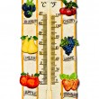 The Thermometer fruit model isolated on white background — Stock Photo