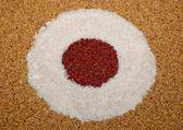 A arte de arroz e arroz e arroz integral — Foto Stock
