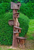 The Wooden of birdhouse family — Stock Photo