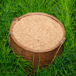 The Paddy on bamboo basket in green rice field - Stock Photo