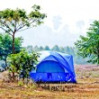 The Blue tent on the forest — Stock Photo