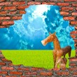 the wooden horse with ruin brickwall on blue background — Stock Photo