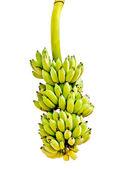 The Banana isolated on white background — Stock Photo