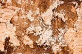 The Rough cement wall texture background — Stock Photo