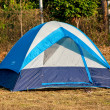 The Blue tent on the forest - Stock Photo