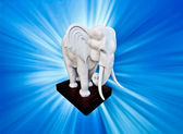 The White elephant with blue ray background — Stock Photo